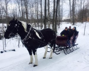 Go for a sleigh ride during a winter visit to Bear Lake B&B
