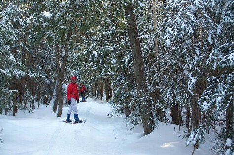 Women in red coat snowshoeing in forest