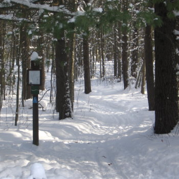 Cross-Country Skiers and Hikers' Delight