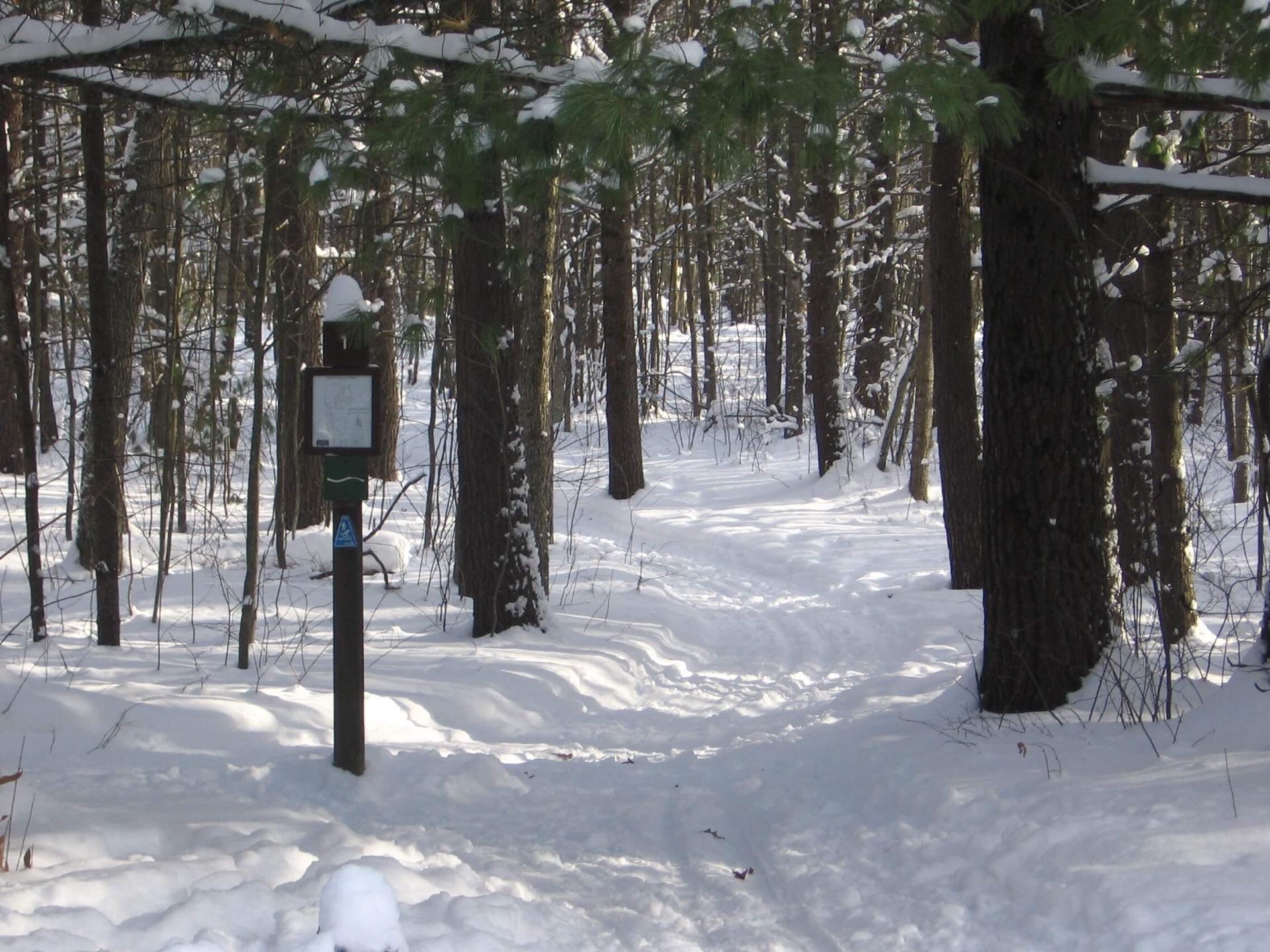 Ogemaw Hills Pathway in snow