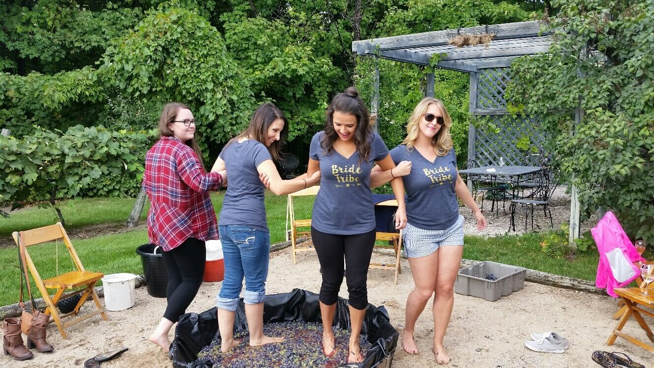 Group stomps grapes at Grey Hare Vineyard Inn