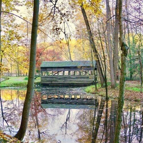 Covered bridge at The Morris Estate in fall.