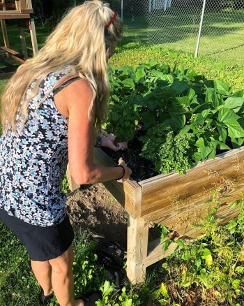 Innkeeper Jan Smith snips parsley from a raised planting bed for use in a breakfast dish.