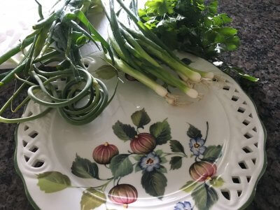 Garlic scapes, Green Onions and Parsley Fresh from the Garden on a plate at House on the Hill B&B