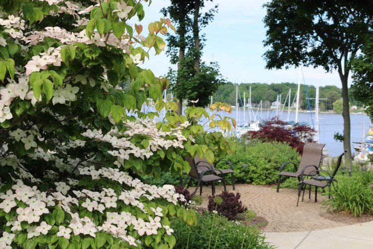 Lakeside patio with sailboats in the background